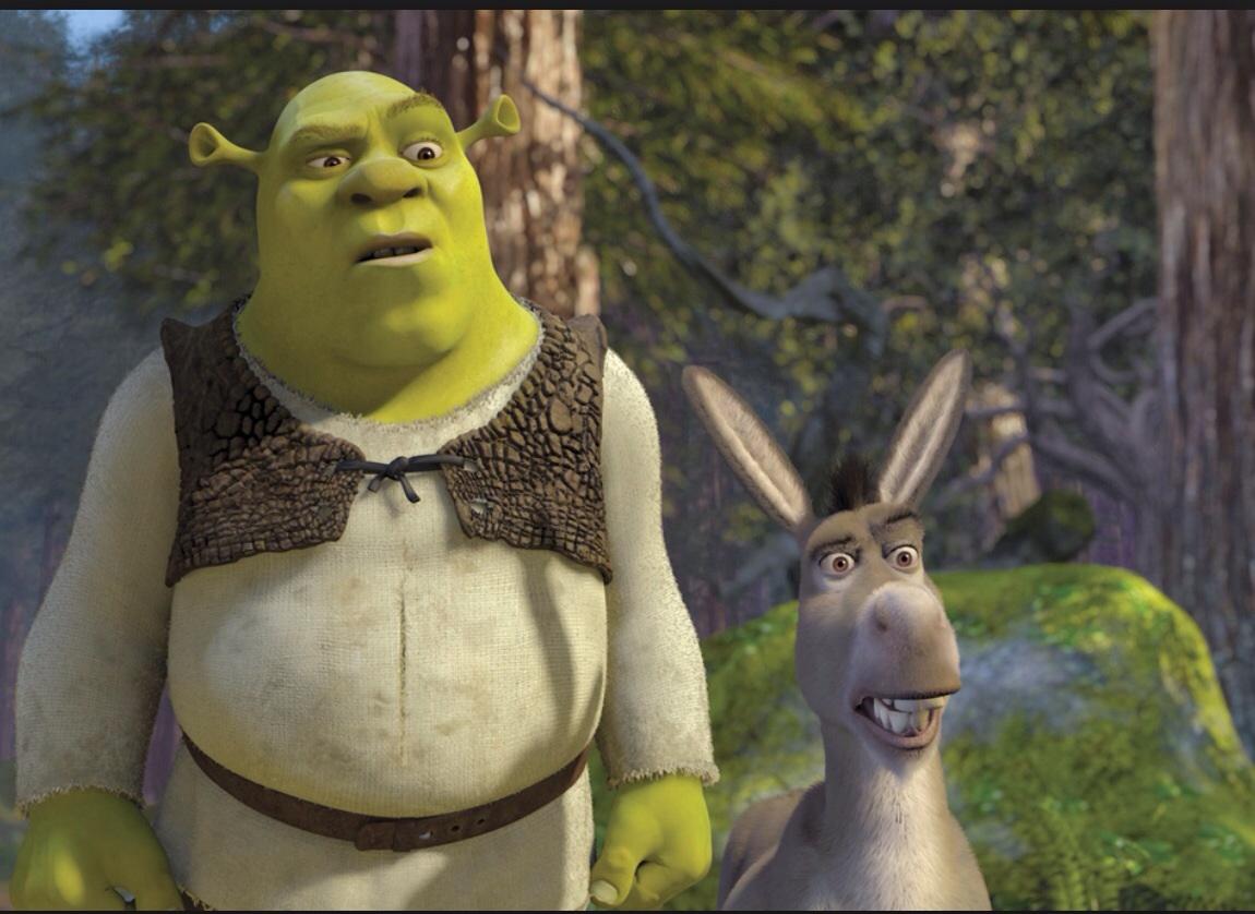 buena dinámica shrek y burro